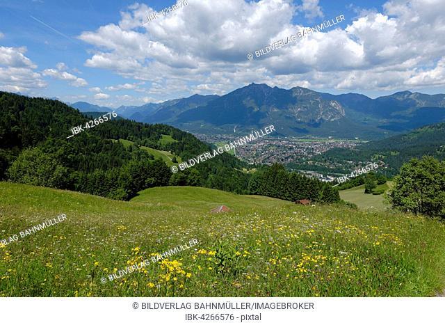 Pastures, Buckelwiesen meadow between Wamberg and Eckbauer, Wetterstein mountains with Alpspitze and Zugspitze behind, Garmisch-Partenkirchen District