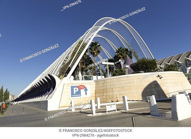 The Prince Felipe Science Museum, a Spanish museum dedicated to science, technology and the environment, is integrated into the complex known as the City of...