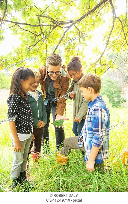Students and teacher examining leaf outdoors