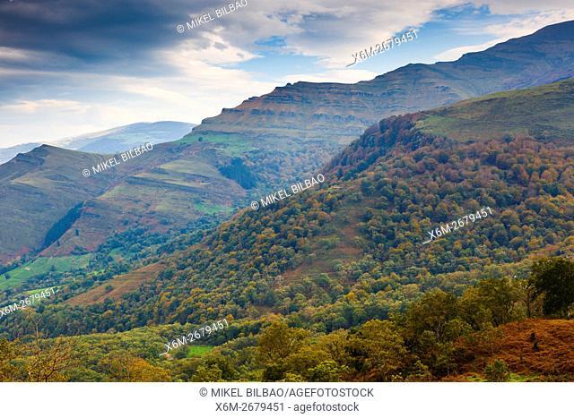 Beechwoods. La Sia mountain pass. Collados del Ason Natural Park. Cantabria, Spain