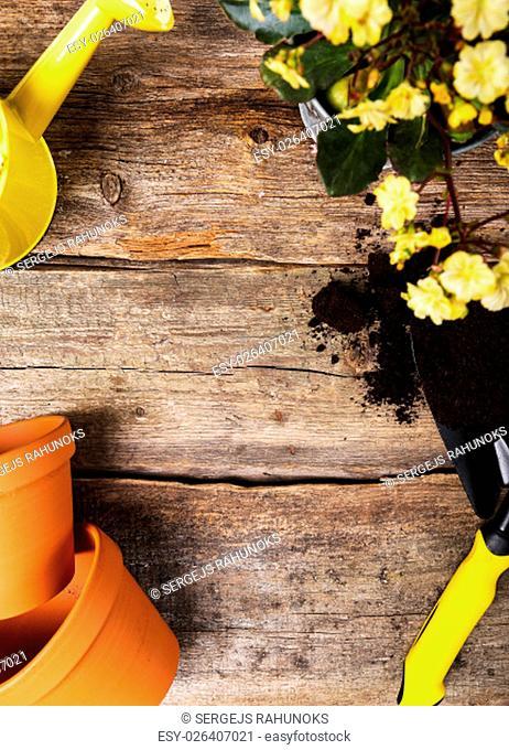 Garden, equipment. Tools for gardening