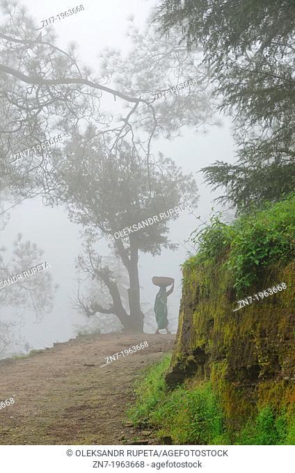 A woman on mountain road, Himalayan range, Almora, India
