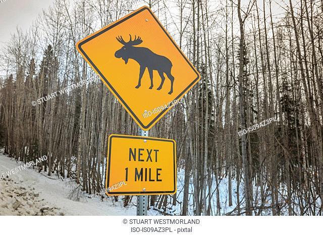 Moose Crossing sign near Fairbanks, Alaska, USA