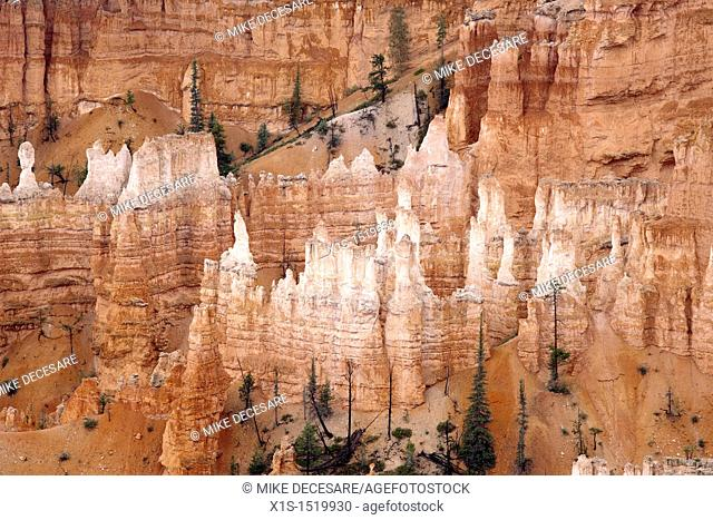 Bryce Canyon spires capped by white