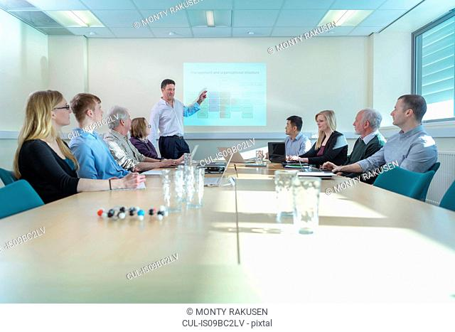 Scientists discussing pharmaceutical project in meeting room