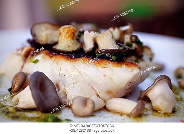 Sea bass with King oyster mushroom, Pleurotus eryngii, and pesto  Molinos de Duero, Soria  Castile-Leon  Spain