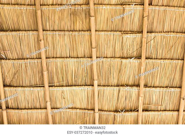 Inside of thatch roof on the countryside cottage