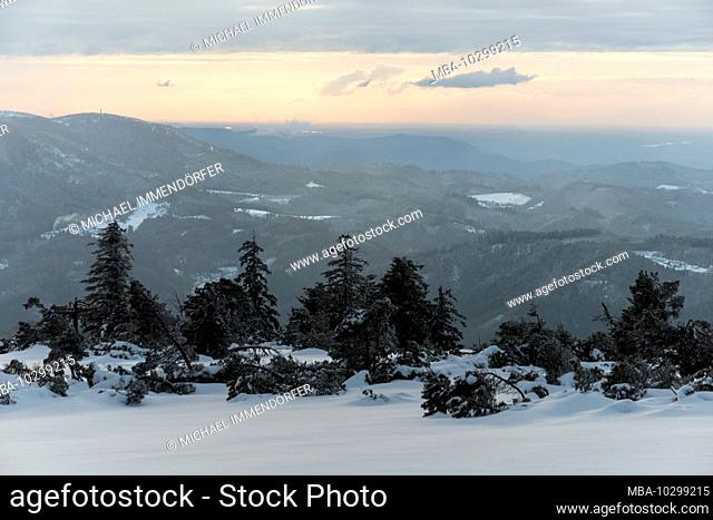 Germany, Baden-Wuerttemberg, Black Forest National Park, Black Forest high road, Schliffkopf, snowy winter landscape with a view into the Rhine valley