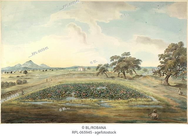 Landscape showing the countryside around Hazaribagh Bihar with hills, paddy fields, a small Muslim tomb and a lotus pool. Watercolour
