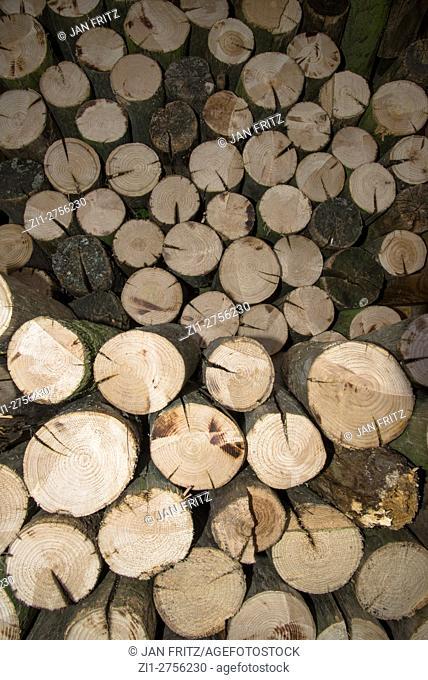 Piled chopped wood