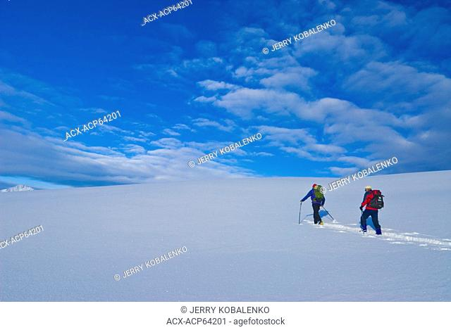 Skiers, Purcell Mountains, British Columbia, Canada
