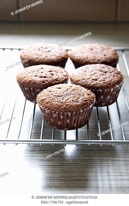 Freshly baked chocolate cupcakes in polka dot paper cases stand cooling on a cooling rack