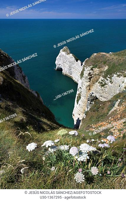 High cliff of Etretat, in Alabaster Coast  Seine-Maritime department, Haute-Normandie region  France