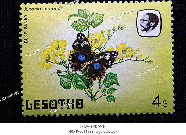 blue pansy Junonia oenone, postage stamp, Lesotho, 1984