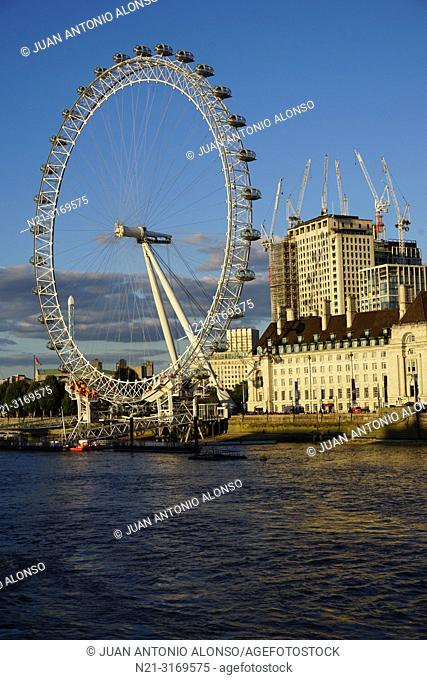 The London Eye, the County Hall on Queen's Walk and the river Thames. London, England, Great Britain, Europe