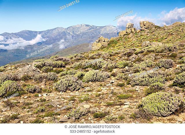 Sierra de Gredos from Caballera cliff. Avila. Castilla Leon. Spain. Europe