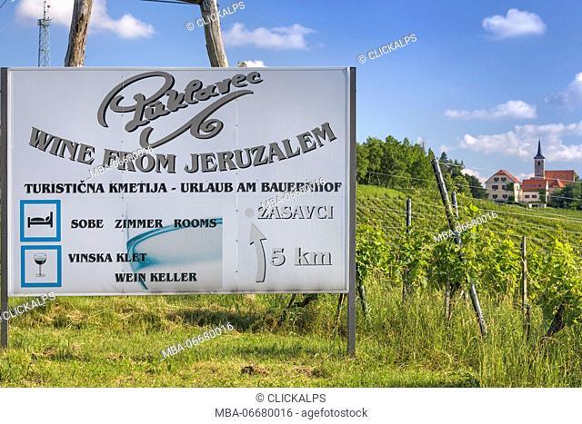 Europe, Slovenia. Tourist informations table near the vineyard of Jeruzalem, Ljutomer