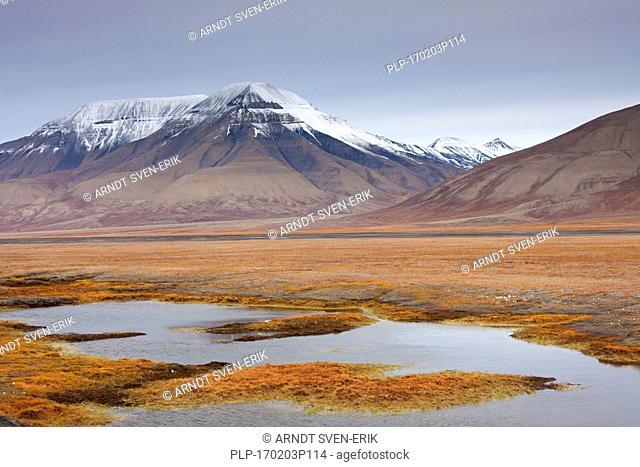 Adventdalen in autumn, valley that follows the Adventdalselva / Advent Valley River near Longyearbyen, Svalbard / Spitsbergen