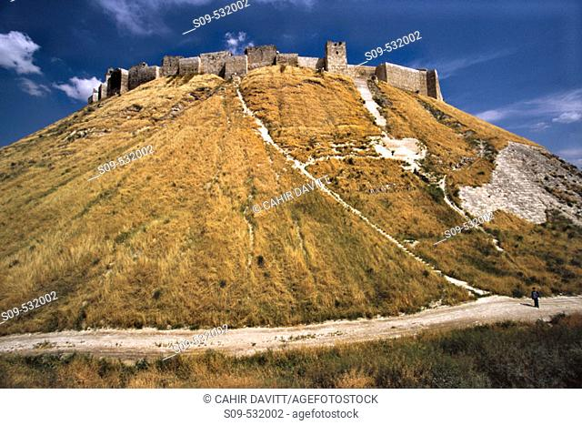 The Great Citadel of Aleppo with the Glacis defensive mound in the foreground in Aleppo, Halab, Syria