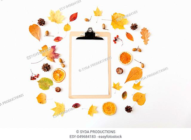 autumn fruits and clipboard with blank white paper