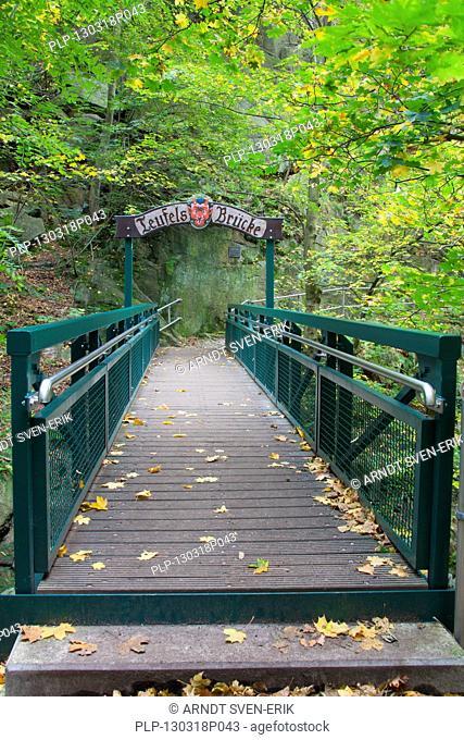 Teufelsbrücke / Devil's bridge at the Hexentanzplatz / Witches' Dance Floor, Thale, Saxony-Anhalt, Germany