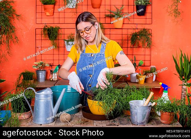 Woman repotting Rhipsalis on her terrace