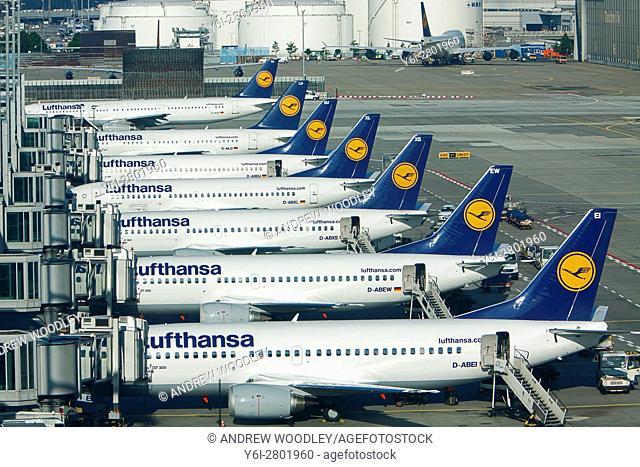 Lufthansa jets Frankfurt Airport Germany