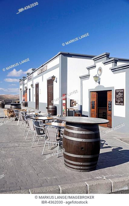 Bodega La Geria in the vinyard region La Geria, Lanzarote, Canary Islands, Spain