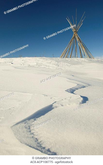 Bare teepee poles stand on snow-covered prairie, Wanuskewin Heritage Park, Saskatoon, Saskatchewan