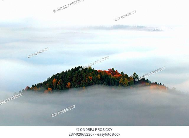 Hill with autumn trees in the fog clouds, white waves, foggy morgen