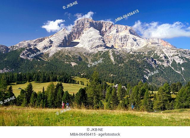 Europe, Italy, South Tirol, Pragser Dolomiten / Dolomiti di Braies (mountains), Plätzwiese, Hohe Gaisl, (mountain), 3146 m