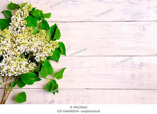 The beautiful lilac on a wooden background, copy spase