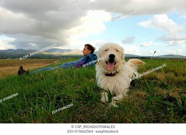 Labradoodle and owner