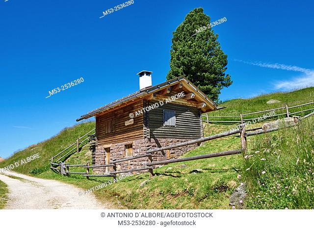 A mountain hut in Paneveggio Pale di San Martino Natural Park. Paneveggio. Trento Province. Trentino-Alto Adige. Italy