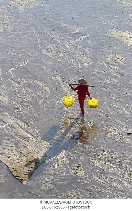 China, Fujiang Province, Xiapu County, Woman, Fisherman on foot, harvesting shells, wearing a yoke with two buckets