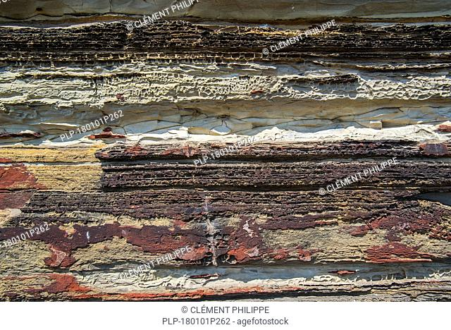 Close up of Devonian Old Red Sandstone in sea cliff at Duncansby Head near John o' Groats, Caithness, Highland, Scottish Highlands, Scotland, UK