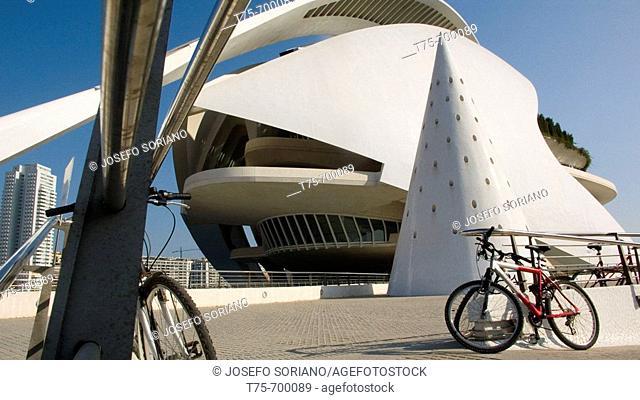 Palace of Arts Reina Sofía, City of Arts and Sciences by S. Calatrava. Valencia. Valencia, Spain