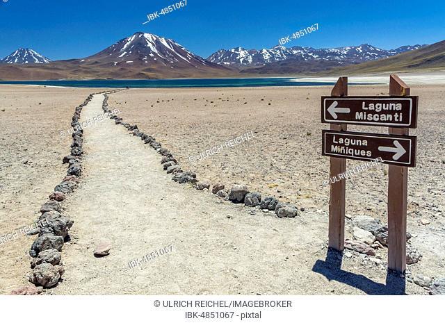 Guide to the lagoon, Laguna Miscanti with Volcano Chiliques and Cerro Miscanti, Altiplano, Región de Antofagasta, Chile