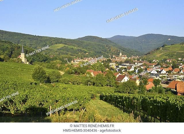 France, Bas Rhin, Alsace Wine Route, Andlau