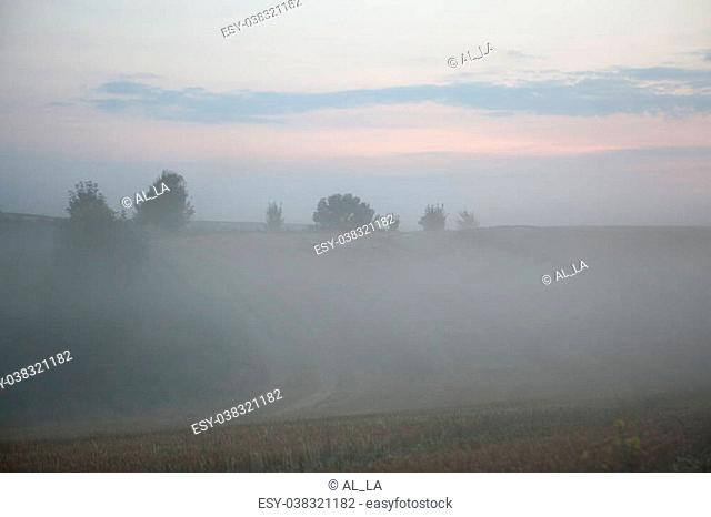landscape of dense fog in the field at sunrise in late summer