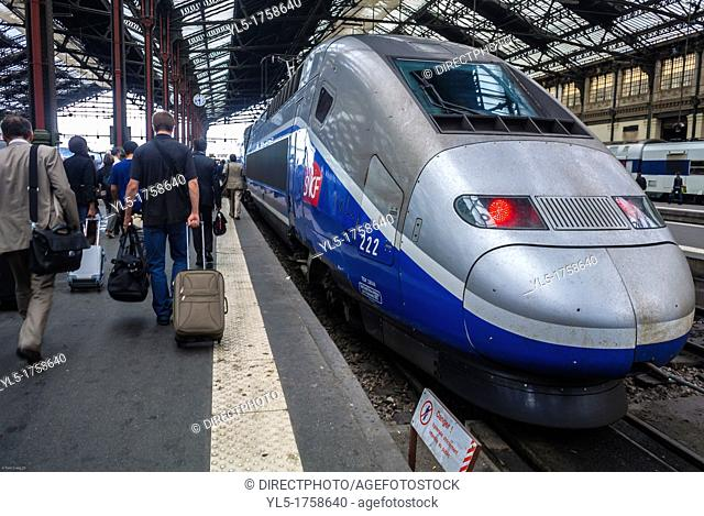 Paris, France, Toursts Traveling in Train Station, Gare de Lyon