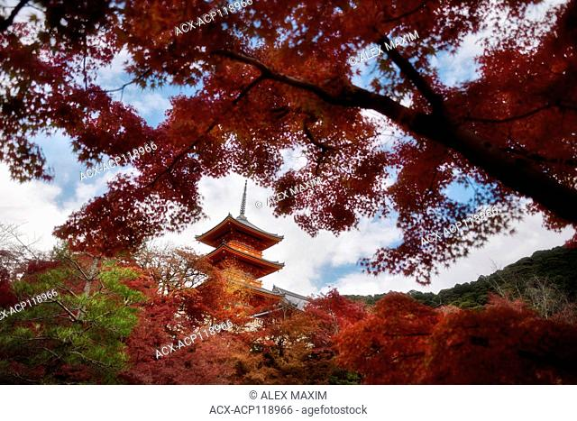 Beautiful autumn scenery with red Japanese maples and Sanjunoto pagoda of Kiyomizu-dera Buddhist temple in Higashiyama, Kyoto, Japan 2017