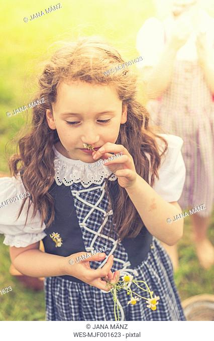 Germany, Saxony, portrait of girl wearing dirndl smelling chamomile flower