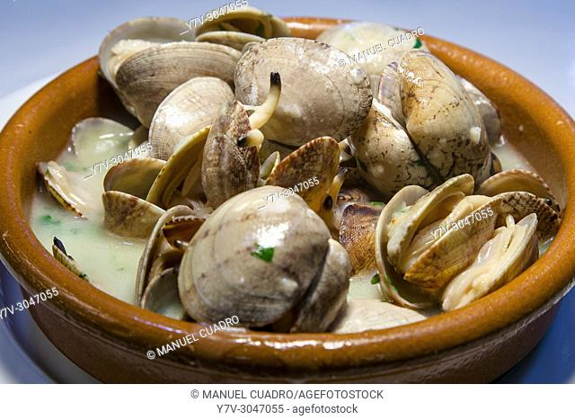 Plato de Almejas en salsa verde a la cazuela / Clams in green sauce. Basque Country, Spain