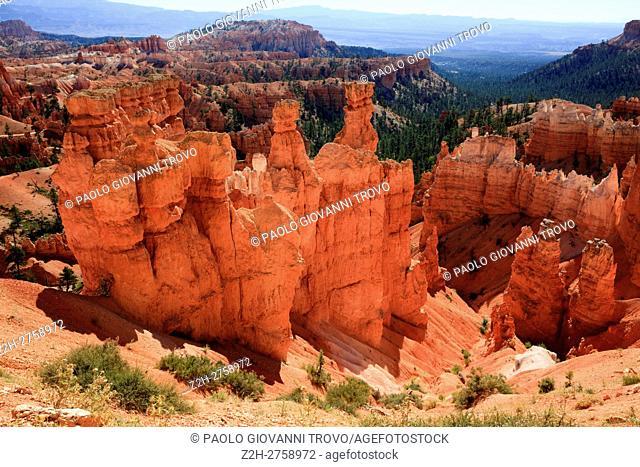 Hoodoo rock formations in Bryce Canyon National Park, Utah, USA
