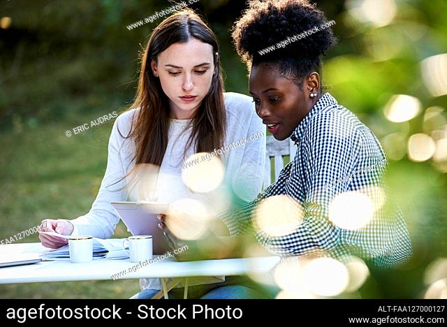 Young female friends using digital tablet while studying in park