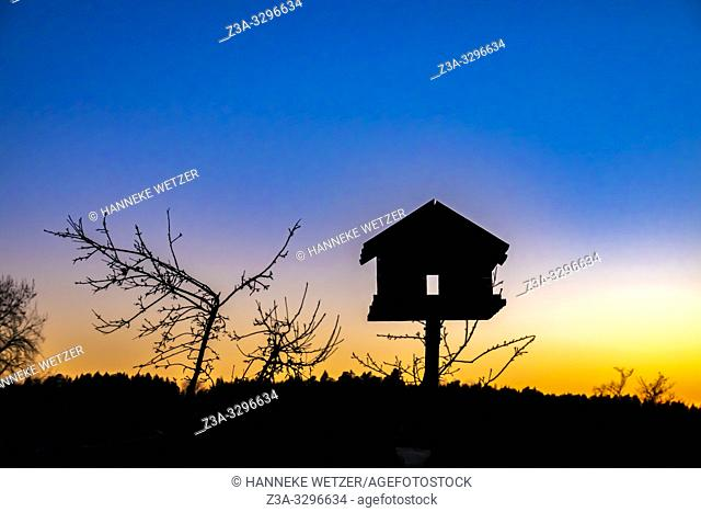 Bird house at sunset in Sweden