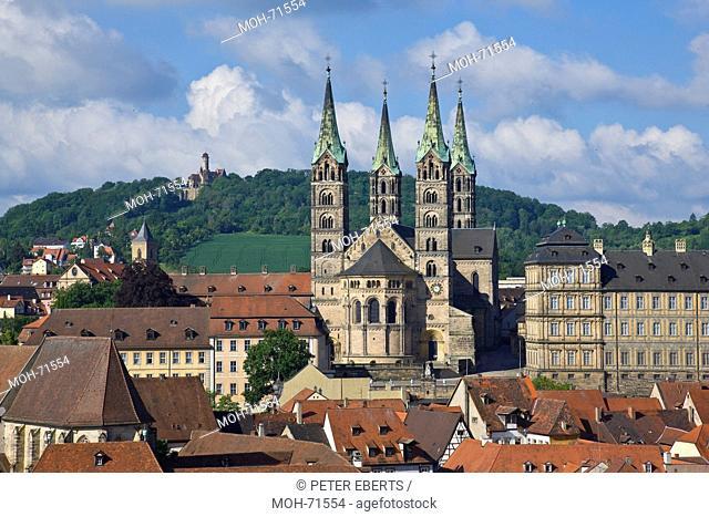 Dom mit Residenz von Osten, Karmelitenkirche, Altenburg, Blick vom Turm der Martinskirche