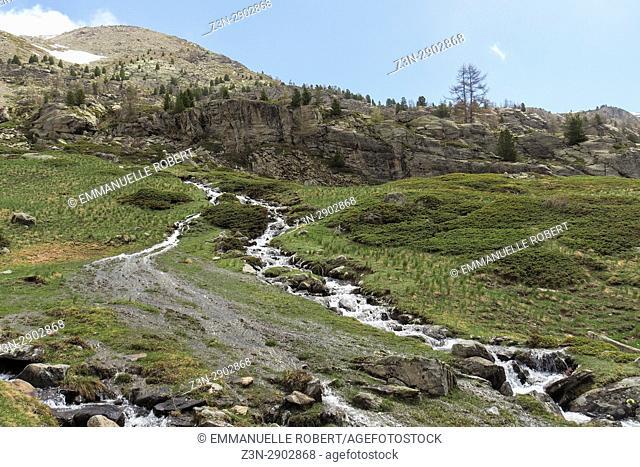 Vallée de la Clarée, Hautes Alpes, Provence Alpes Côte d'Azur, France