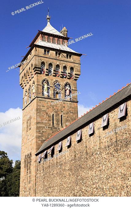 Cardiff Caerdydd, South Glamorgan, South Wales, UK, Europe  Cardiff castle clock tower and walls